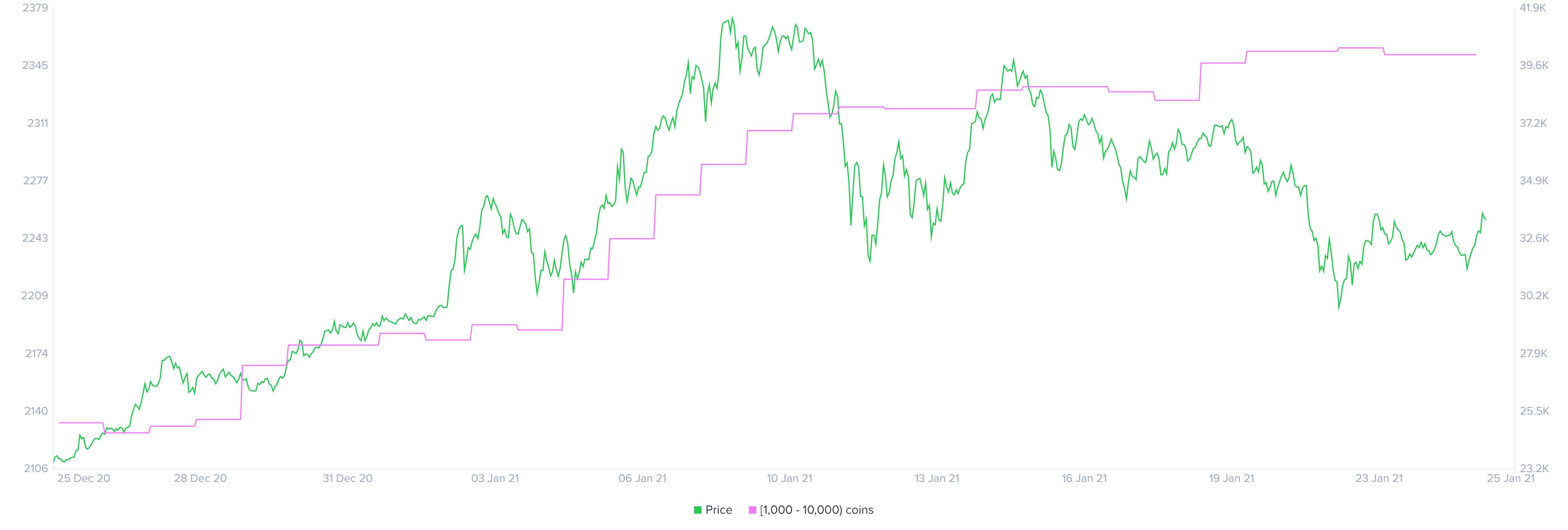 Bitcoin holder distribution